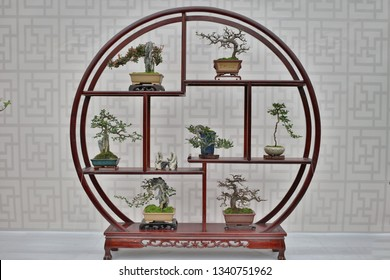 the Bonsai and Penjing landscape with miniature