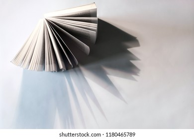 Book from Above