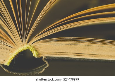 book macro as a background