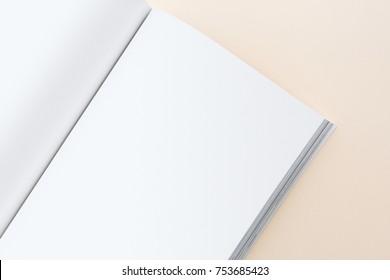 Book mockup blank