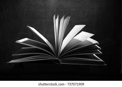 Book. Opened magic book, book on a dark monochrome background