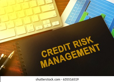 Master thesis on credit risk management