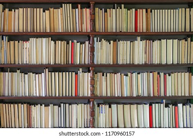 Books at Big Wooden Bookshelf in Library