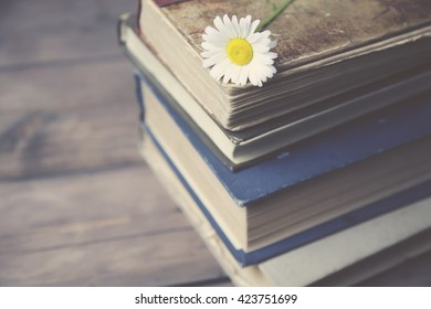 books and chamomiles on wooden background