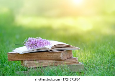 books and lilac flowers on nature meadow background. summer relax reading concept. copy space.