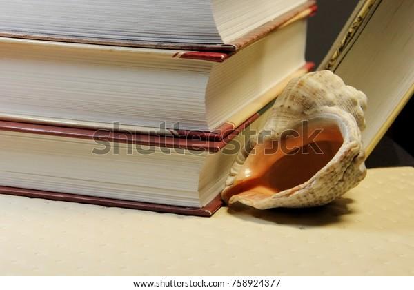 books-sea-shell-600w-758924377.jpg