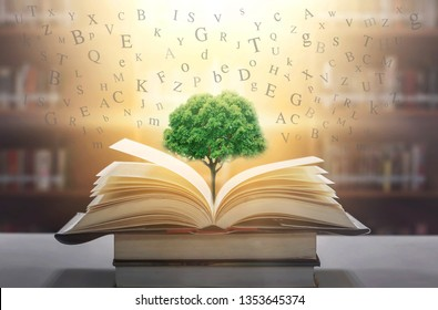 Books that are open on the table and the English alphabet float above the book. With a tree of wisdom growing on a beautiful book And the background of the bookshelf blurred