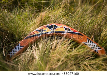 Boomerang lying in the grass