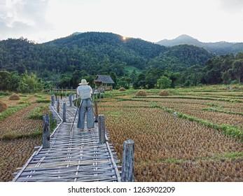 Pai Bamboo Bridge Images, Stock Photos & Vectors | Shutterstock