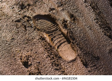 Boot print in muddy brown soil, Tasmania, Australia