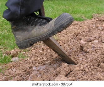 Boot pushing spade into earth