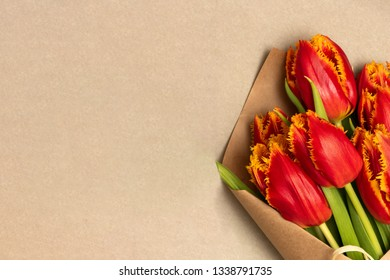 Boquet of red tulips on the cardboard background. Rightside view