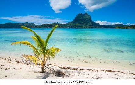 Bora Bora beach, Tahiti, French Polynesia