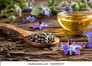 Borage seeds on a spoon with fresh blooming Borago officinalis plant and oil in the background