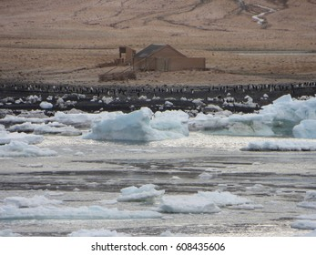Borchgrevink's Hut Cape Adare