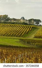 Bordeaux Chateau d Yquem
