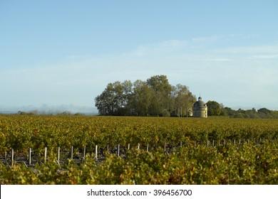 Bordeaux Pauillac Chateau Latour