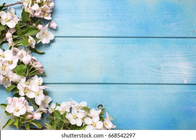 Border from apple tree  flowers on blue wooden background. Place for text. Selective focus. Top view.