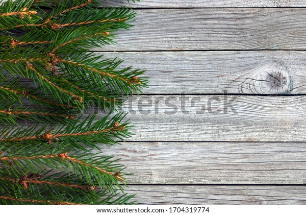 border of christmas tree branches on wooden background