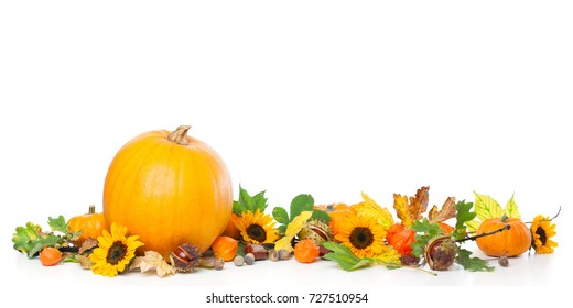 Border frame of large and small pumpkins with leave, physalis and sunflowersStudio shot, isolated on white background
