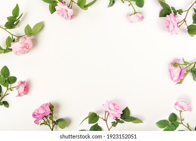 Border frame with pink roses on white background. Flat lay, top view. Floral background. Floral frame. Elements for design