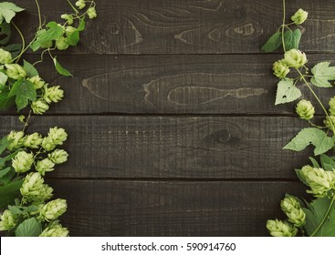 Border from green hop branches on dark rustic wooden background. Concept of beer production. Mock up for beer presentation. Brewing.