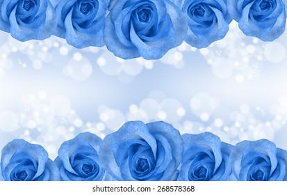 Border of roses isolated on blue background