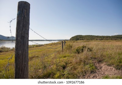 The border Russia and China, barbed wire at the border, Amur river, the Far East of Russia, autumn.