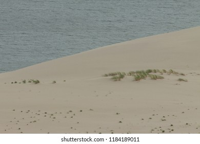 the border of the sand dune and the Curonian lagoon from the highest part of the Curonian spit