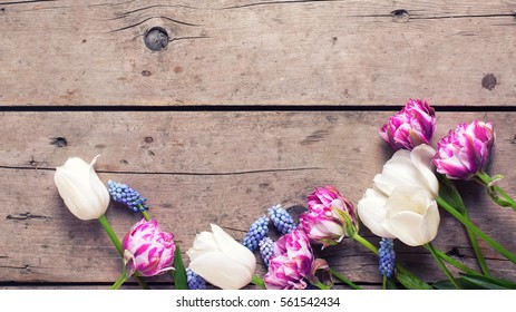Border from violet and white tulips and muscaries flowers on aged wooden  background. Selective focus. Place for text. Flat lay still life. Toned image.