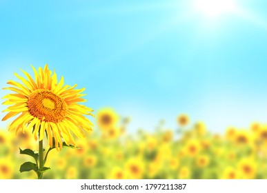 Borders with yellow sunflowers on blurred sunny background. Mock up template. Copy space for text