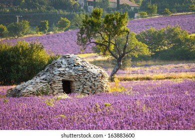 """A Borie - dry-stoned """"house"""", Sault region, Vaucluse, Provence, France"""