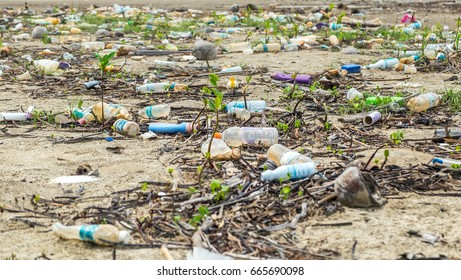 Borneo island, Malaysia - 13 of may, 2017:A lot of garbage and plastic bottles on the sea shore. Beach pollution. Environmental pollution problem. Selective focus on the empty plastic bottle