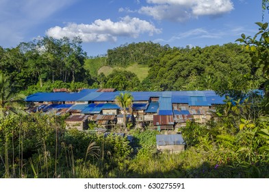 Borneo, Malaysia - Iban longhouse from above, hidden among the trees