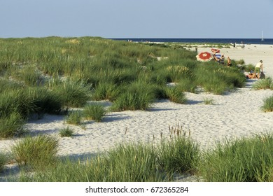 BORNHOLM,DENMARK, -JUNE 19, 2017: Sand on a beach, Dueodde, Bornholm, Denmark, Europe