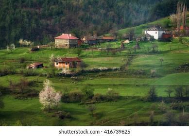 Borovitsa village in the spring, Eastern Rhodopes, Bulgaria