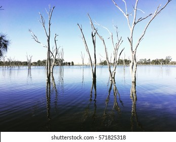 Boshack Camp - Perth