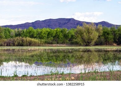 Bosque del Apache National Wildlife Refuge offers great views of mountains, trees, sky, and water