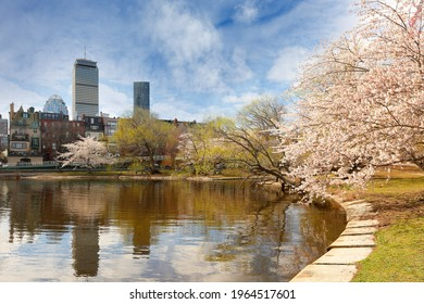 Boston Charles River Esplanade on a sunny spring day with cherry blossom. Selective focus has been applied.