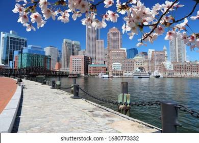 Boston Stadt, Massachusetts in den Vereinigten Staaten. City Skyline. Frühlingssaison - Frühlingsblüten.