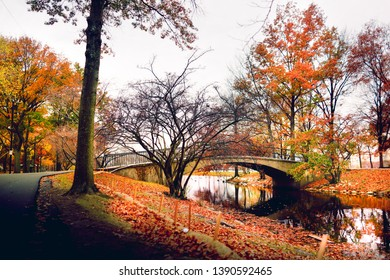 Boston Esplanade in the Fall