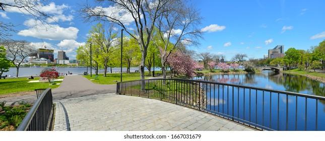 Boston Esplanade in the spring, panoramic view.