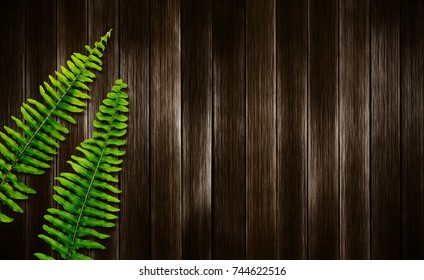 Boston fern leaves on wood background with copy space