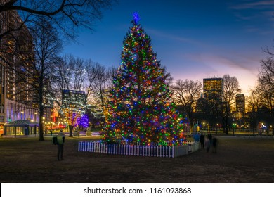 Boston, MA - 12/21/17: The Boston Common Christmas Tree is admired by tourists and locals alike.