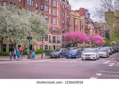 Boston, MA - 5/6/18: Commonwealth Ave in Boston adorned with blossoming trees in spring