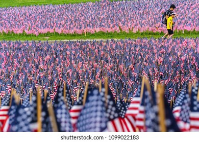 Boston, MA, USA-May 26, 2018. Boy and man walk among hundreds of US flags planted in Boston Common to commemorate fallen soldiers on Memorial Day.