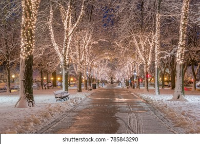 Boston in Massachusetts, USA at Commonwealth Avenue with snow and Christmas lights at night.