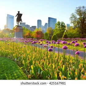 Boston Public Garden at dawn. George Washington statue and downtown city skyline in background