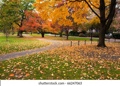 Boston Public Garden in the Fall Season.