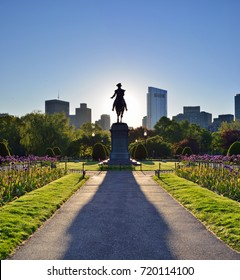 Boston Public Garden and George Washington statue at dawn